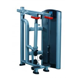 Standing Calf Machine FW9821